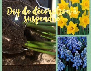 Décoration avec des fleurs de printemps.
